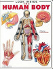 Look Inside the Human Body